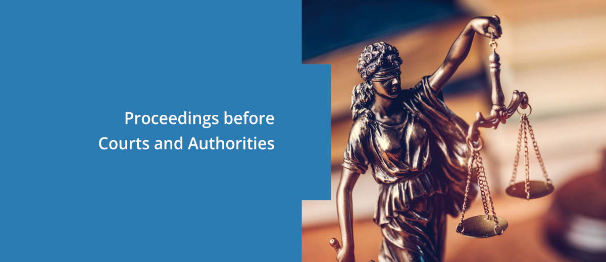 Proceedings before Courts and Authorities